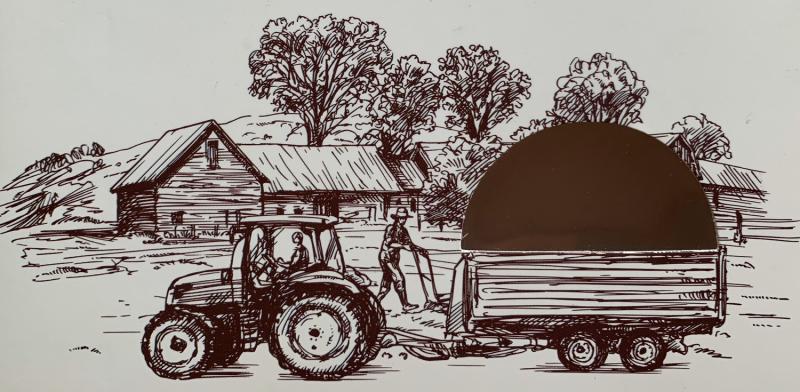 Nông trại hạt điều Đồng Phú